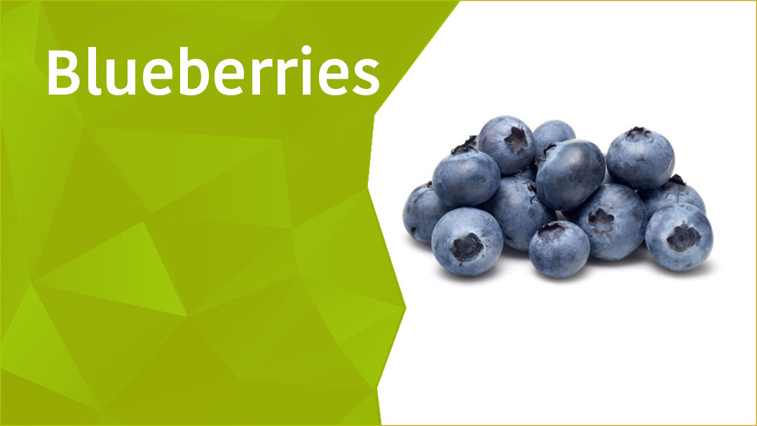 18 Health Changing Benefits of Blueberries - OAWHealth   Blueberry Medicinal Uses